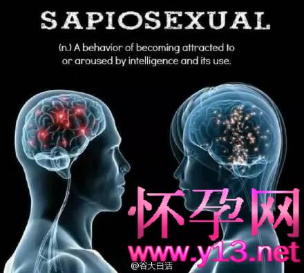 你才异性恋,你才同性恋,我们是优雅的智性恋